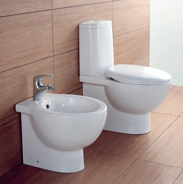 Wall Hung Or Floor Mounted Sanitary Ware Wc And Bidet Toilet